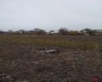 купити землю  в  Смілі. Фото 3